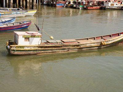 Panama fishing-2804458__480