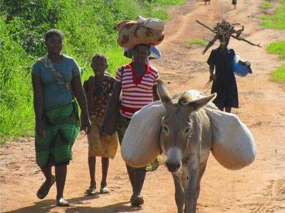 mozambique-80752__480